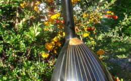 mandolina-1_002
