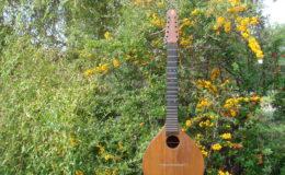 mandolina_nn16_001