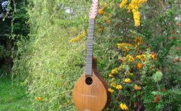 mandolina_nn16_002
