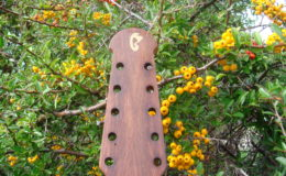 mandolina_nn16_004