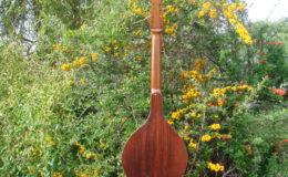 mandolina_nn16_007