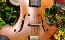 skrzypce -002