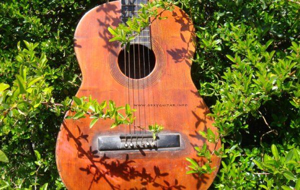 Pirles Guitar