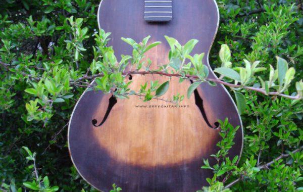 Gitara PG