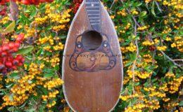 Ligyrofon mandolina (3)