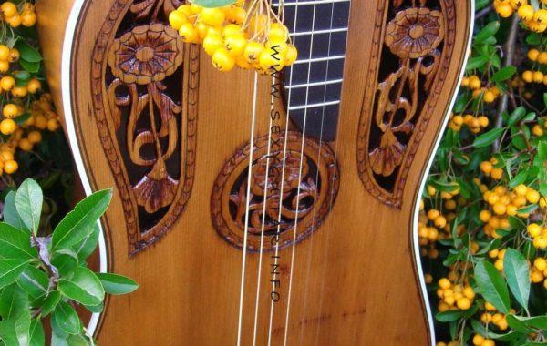 Secesyjna gitara(отложение)
