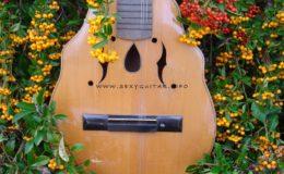 mandolina z elfami (2)