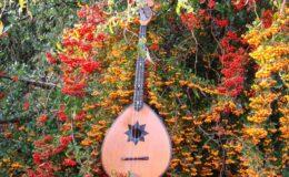 ukulele z gwiazdą rezonansową (1)