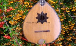 ukulele z gwiazdą rezonansową (2)