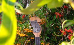 ukulele z gwiazdą rezonansową (3)