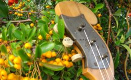 ukulele z gwiazdą rezonansową (4)