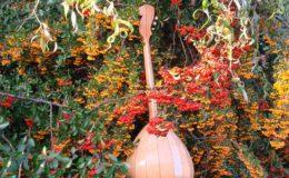 ukulele z gwiazdą rezonansową (5)