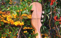 ukulele z gwiazdą rezonansową (6)