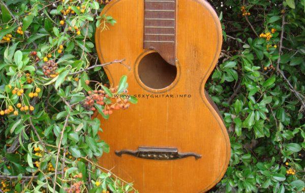 Gitara NN J1