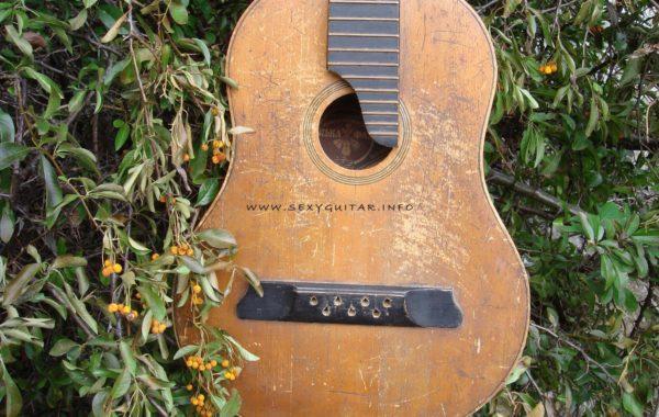 Ukraińska Українська гітара