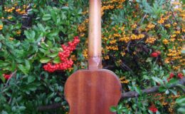 mala gitarka (4)