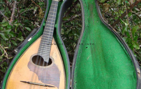 Mandolina мандоліна