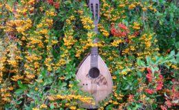 mandolina 2 otwory (1)