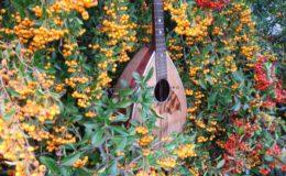mandolina 2 otwory (2)