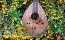 mandolina 2 otwory (3)