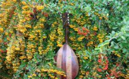 mandolina 2 otwory (5)