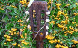 mandolina 2 otwory (6)