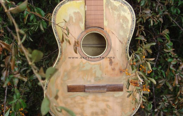 Antike Gitarre