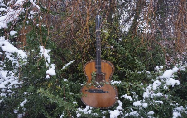 Gitara W J